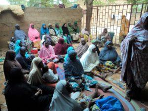 Niger PQDI